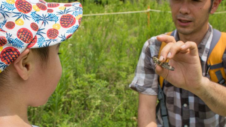 未就学児親子向けの身近な自然観察会を開催します!